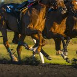 Kentucky Derby 2020 Odds with Demling: Can Tiz The Law Win?