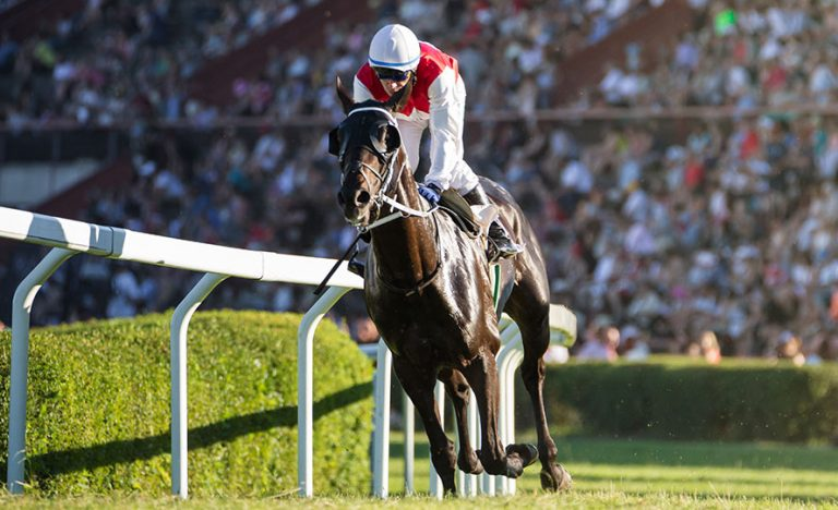 Coral Eclipse Preview, Odds & Picks