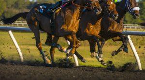 horse racing- Kentucky Derby