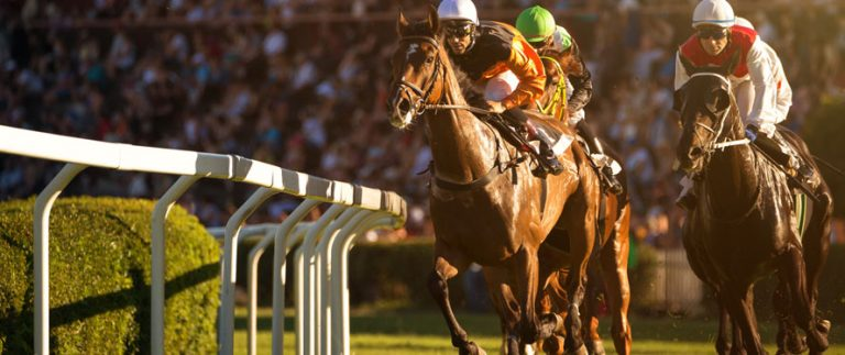Preakness Stakes 2020: Odds, Preview & Pick (3rd October)