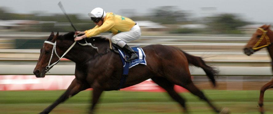 Royal Ascot Day 3 stock royalty free horse racing