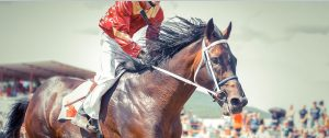 Saragota July 16 Odds: Peter Pan Stakes & Schuylerville Stakes