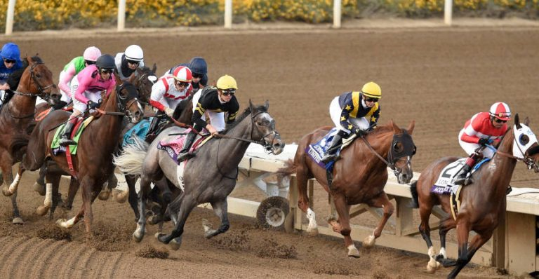 Breeders' Cup Classic Preview, Odds & Picks (7th November)