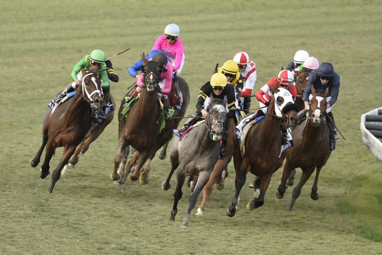 Breeders' Cup Mile Preview, Odds & Picks (7th November)