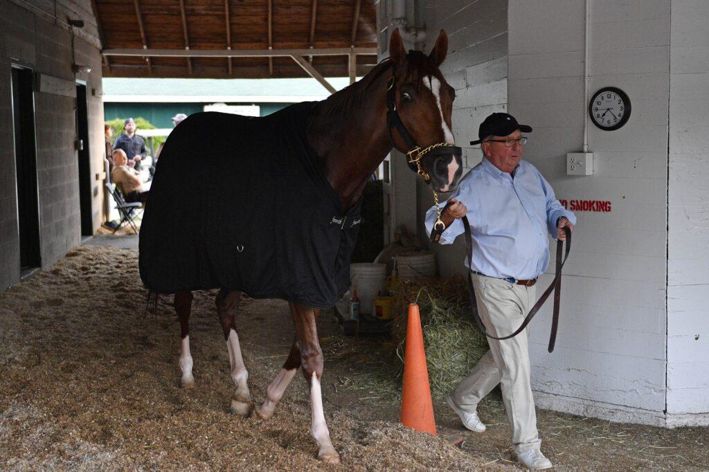Horse Racing: Kentucky Derby Workouts
