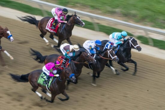 Horse Racing: 144th Preakness