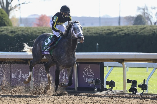 Pegasus World Cup 2021: Date, Picks, Odds, How to Watch (Jan 23)