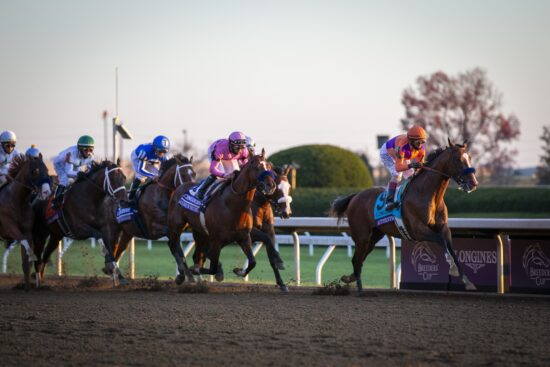 Horse Racing: 37th Breeders Cup World Championship