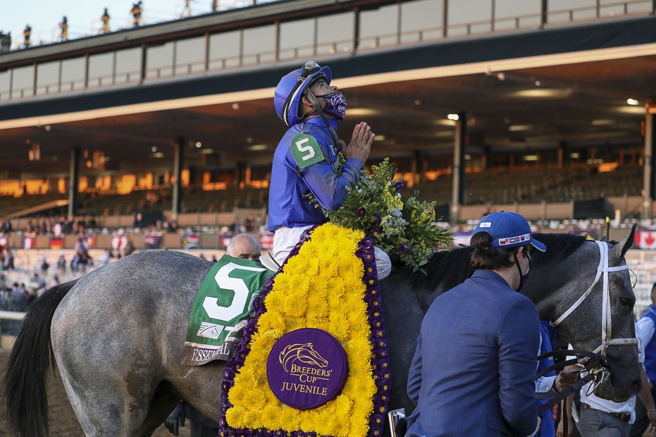 Nov 6, 2020; Lexington, KY, USA; Luis Saez aboard Essential Quality (5) reacts after winning the Breeder's Cup Juvenile race during the 37th Breeders Cup World Championship at Keeneland Race Track. Mandatory Credit: Katie Stratman-USA TODAY Sports