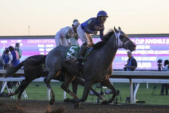 Nov 6, 2020; Lexington, KY, USA; Luis Saez aboard Essential Quality (5) celebrates after winning the Breeder's Cup Juvenile race during the 37th Breeders Cup World Championship at Keeneland Race Track. Mandatory Credit: Katie Stratman-USA TODAY Sports