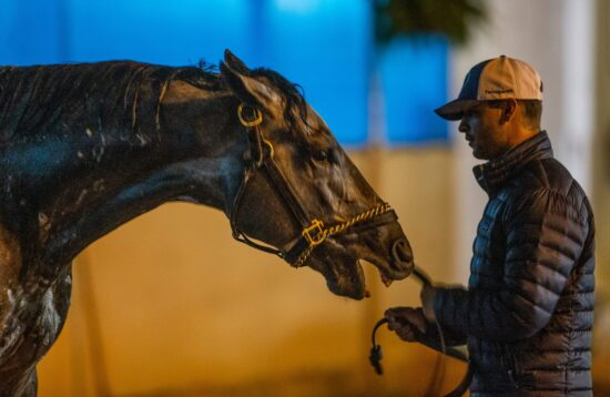 Kentucky Derby favorite Essential Quality nips at his handler while being bathed following his final workout before the race. April 24, 2021Aj4t5725