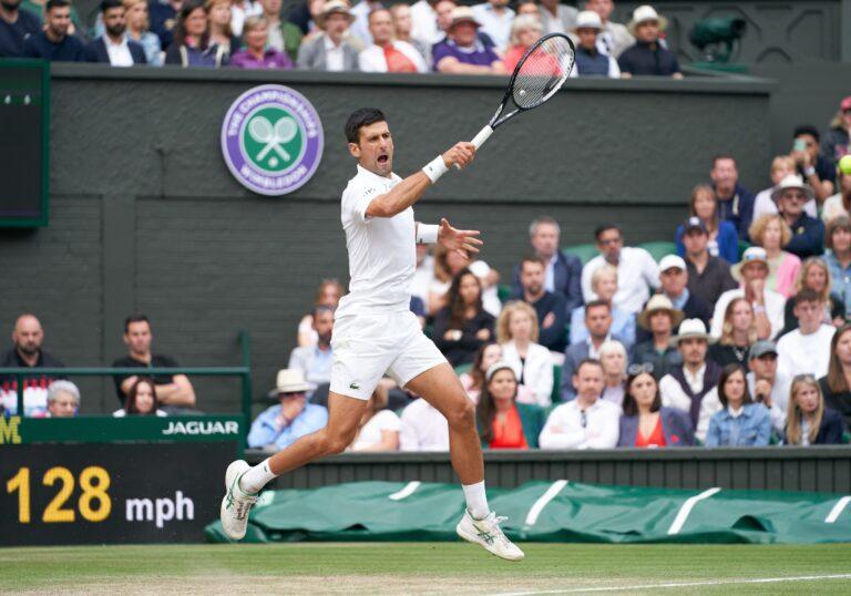 Wimbledon: Novak Djokovic and Matteo Berrettini in Men's Finals