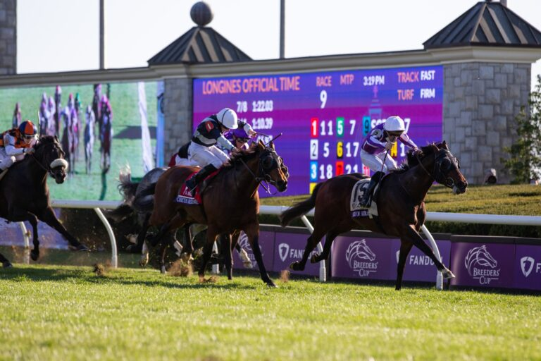 Horse Racing Picks: Early Look At Breeders' Cup Mile Odds & Prediction (November 6)