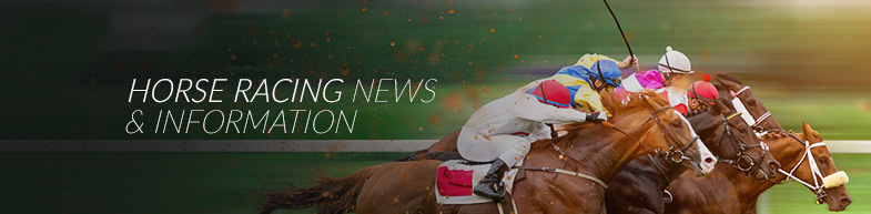 Horse Racing News and Information