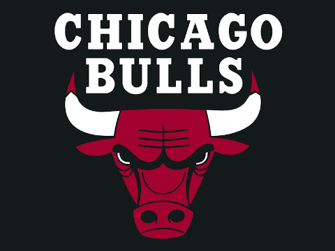 Chicago Bulls' team NBA logo