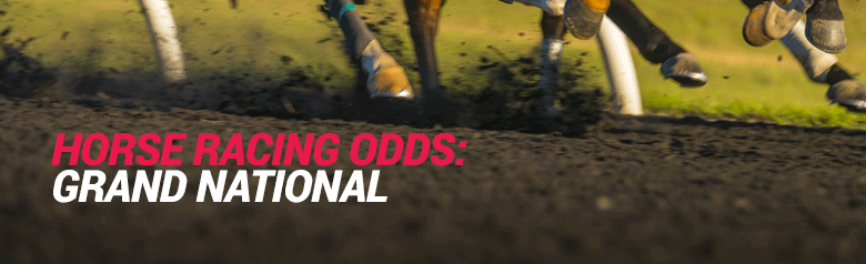 Grand national guide to betting on baseball forex one pip