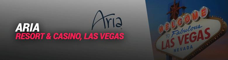 image of the aria las vegas hotel