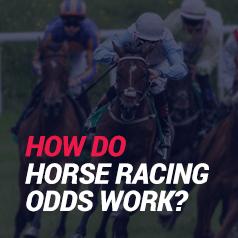 How Do Odds Work In Horse Racing?