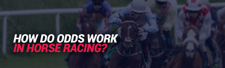 image of how odds work in horse racing