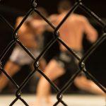 Khabib Secures Lightweight Title, Announces His Retirement