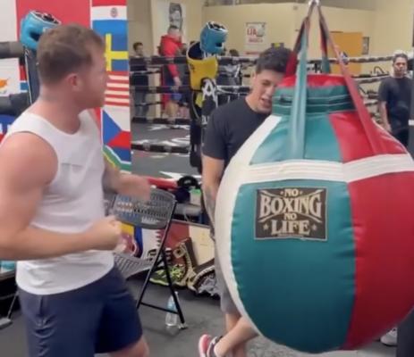 UFC Video: Canelo Alvarez Teaches Brandon Moreno How to Execute Perfect Body Shot