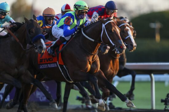 Horse Racing Picks: Early Look At Breeders' Cup Sprint Odds & Prediction (November 6)