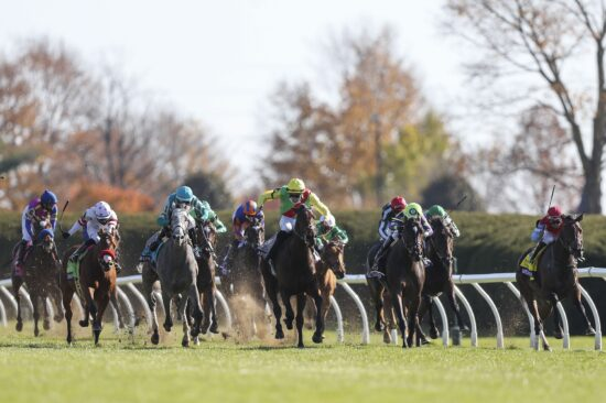Early Look At Breeders' Cup Filly & Mare Turf Odds, Free Horse Picks (Nov 6)