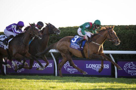 Horse Racing Picks: Early Look at Breeders' Cup Turf Odds & Prediction (November 6)